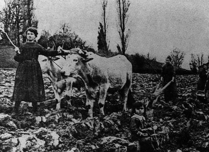 Le travail des femmes dans les champs à Eauze (Gers), 1916 (site ac-toulouse.fr)