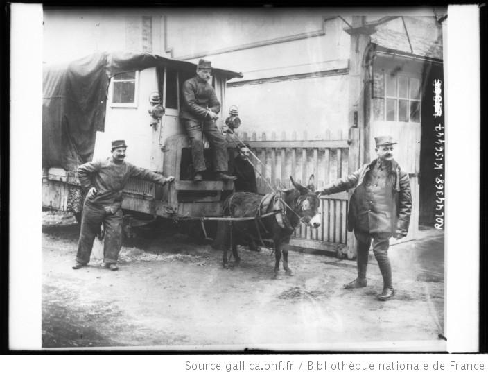 Ane tirant un véhicule (source : gallica.bnf)