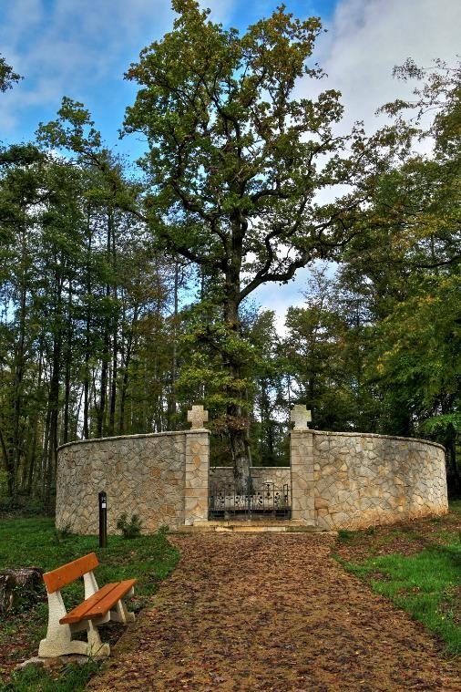 Rotonde dans le bois de Jaulnay (Site stenay-14-18.com)