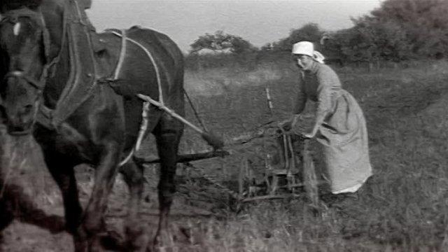 site france3-regions.francetvinfo.fr/champagne-ardenne/14-18/les paysannes dans la grande guerre )