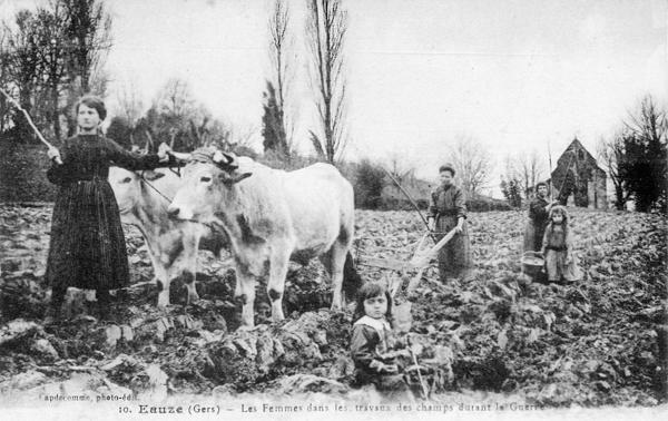 Eauze, Gers. Les femmes dans les travaux des champs durant la guerre (site lamarseillaise.fr)